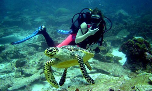 SCUBA DIVING TOUR TURKEY